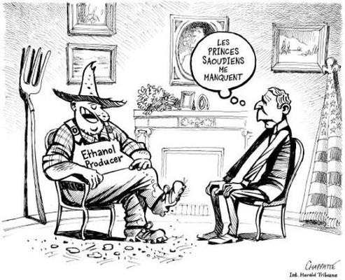 L'actualité écolo n'échappe pas aux caricaturistes !