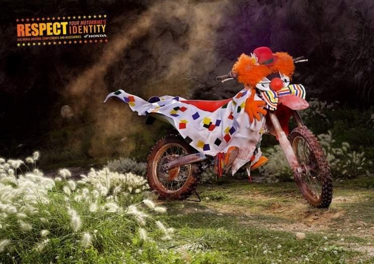 Restez motard... A dos de lapin!