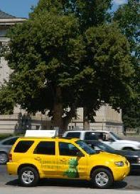 New York : les taxis SUV Escape Hybrid de Ford vous embarquent pour un trajet écolo