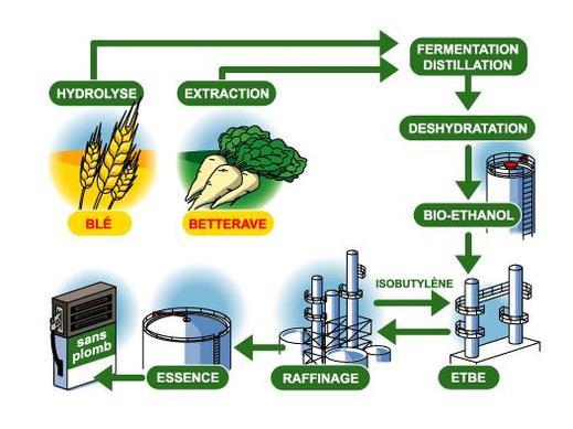 Etude en Suisse : les biocarburants pas si écolos. Des progrès à faire...