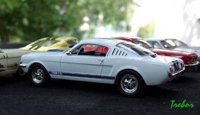 Miniature : 1/43ème - Shelby GT305
