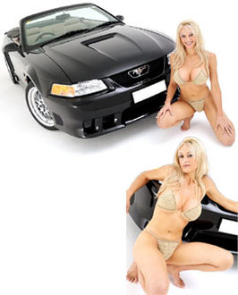 Elle s'appelle Mustang