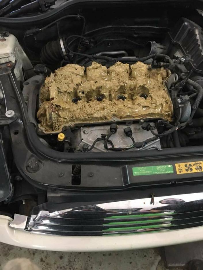 Mini : elle met du lave glace à la place de l'huile dans le moteur
