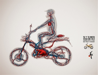 Photo du jour (pub) : Apumanque Bikes : faire corps avec la machine