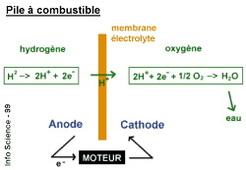 Dijon : les chercheurs se sont consacrés aux piles à combustibles