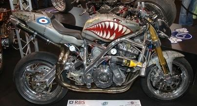 Photo du jour : un requin sur cadre Spondon