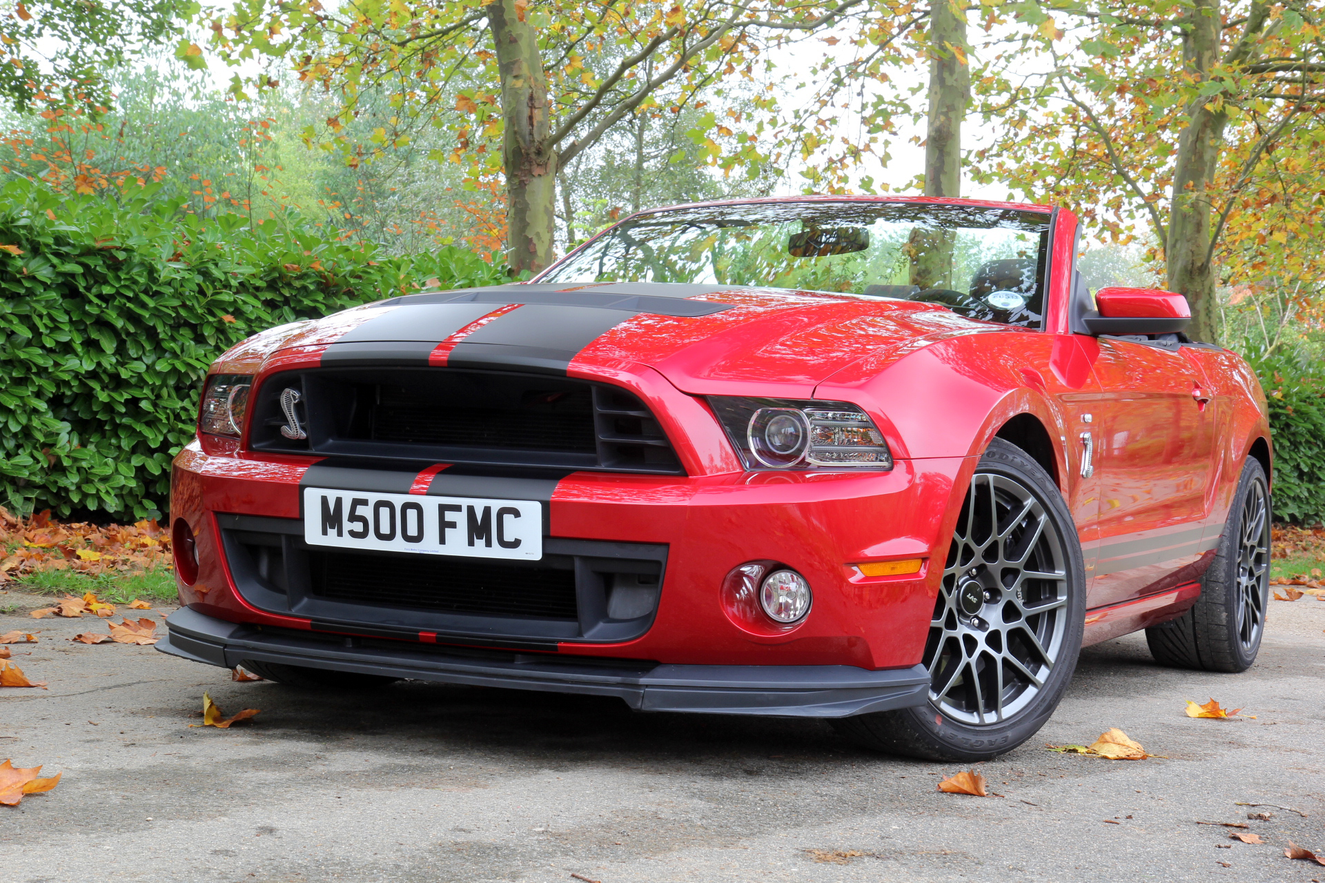 http://images.caradisiac.com/images/2/4/2/4/82424/S0-Essai-video-Shelby-GT500-animal-venimeux-278066.jpg