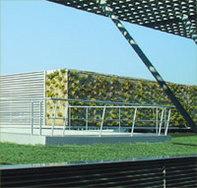 Vertige® : la végétalisation de toiture pour lutter contre la pollution automobile !