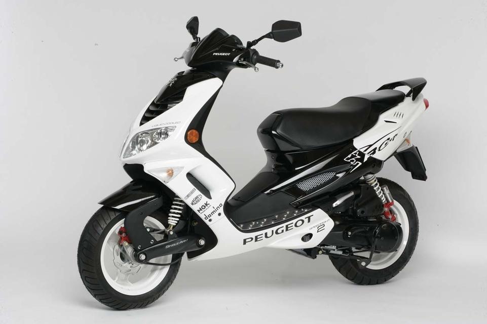 Peugeot : série RCup