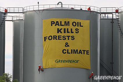 Greenpeace en Indonésie : blocage du chargement et du départ du tanker transportant de l'huile de palme