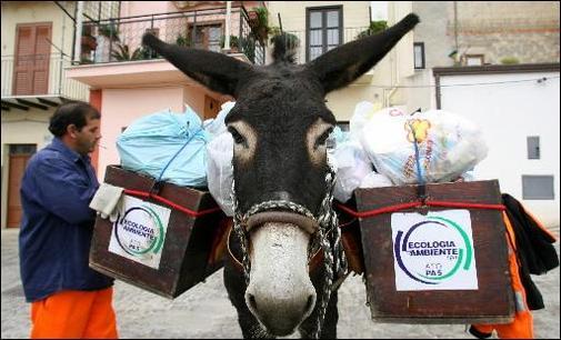 Suite : les ânes remplacent les camions poubelles dans une petite ville de Sicile !