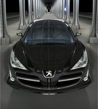 Les concept-cars français à l'honneur