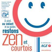 """4e Baromètre AGF-AFPC 2008 : """"Quel conducteur êtes-vous ?"""""""