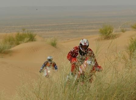 Rallye de Tunisie, Olivier Pain vainqueur
