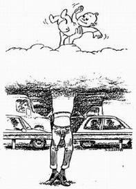 Rencontres scientifiques de l'Afsset : des études montrent que les foetus et les enfants à la maison et à l'école sont atteints par la pollution auto