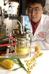 DuPont/BP : le biobutanol est prometteur