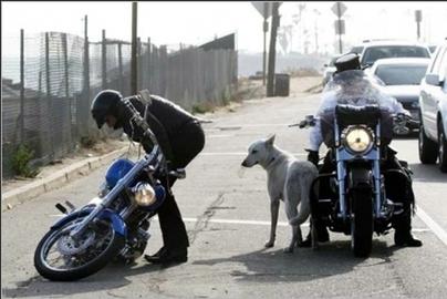 L'idole des jeunes, qui le sont moins depuis les années 60, a chuté de sa moto : Johnny aux USA