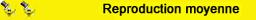 Miniarure : 1/43ème - PEUGEOT 305 SR
