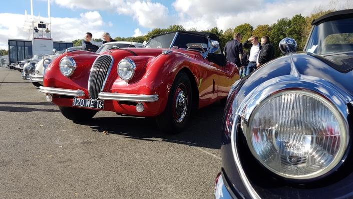 Des Jaguar historiques à l'image des XK 120, XK140, ou encore Type-E.