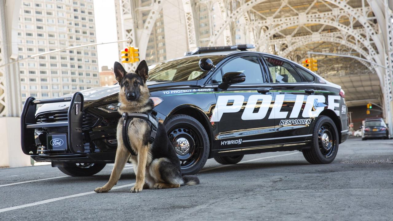 ford lance la premi re voiture de police hybride. Black Bedroom Furniture Sets. Home Design Ideas