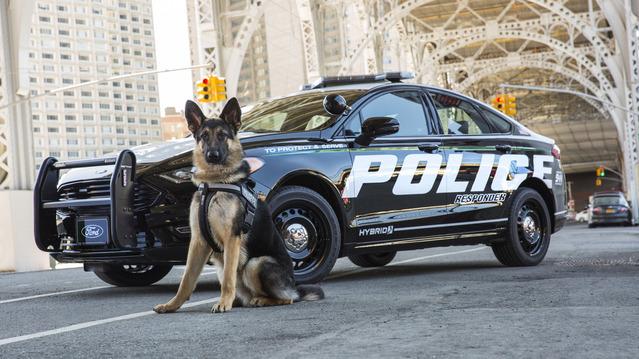 Ford lance la première voiture de police hybride