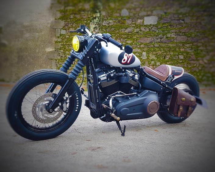 Harley-Davidson Battle Of the Kings : les finalistes français présentés à Lyon