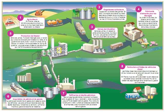 Le biocarburant diester for Salon energie renouvelable