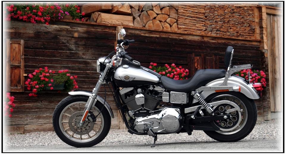 Dyna Low Rider 1450 cm3 de 2003 : un goût de prestige