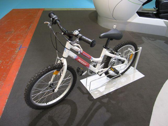 En direct du Salon Planète Durable 2009 : la mobilité durable selon PSA Peugeot Citroën