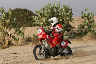 Rallye du Maroc... sous le signe du dromadaire