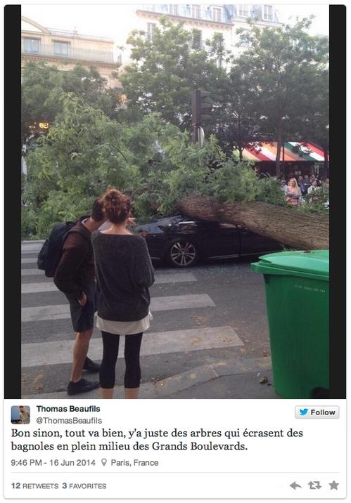 Grands boulevards : un arbre tombe sur un automobiliste parisien