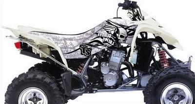 Blackbird offre un kit déco Tribal Skull à votre quad.