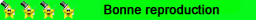 Miniautre : 1/43ème - FIAT Ritmo