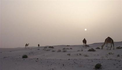 Dakar 2007 : 4ème étape, le Dakar en deuil.