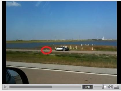 Rebondissement dans l'affaire de la Bugatti Veyron dans le lac : le pélican était peut-être là
