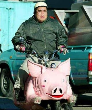 """Insolite: Pour arriver à bon """"porc"""""""