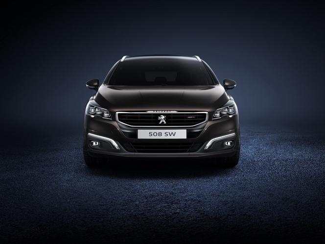 """Salon de Paris 2014 - Peugeot 508 restylée: """"HdG"""""""
