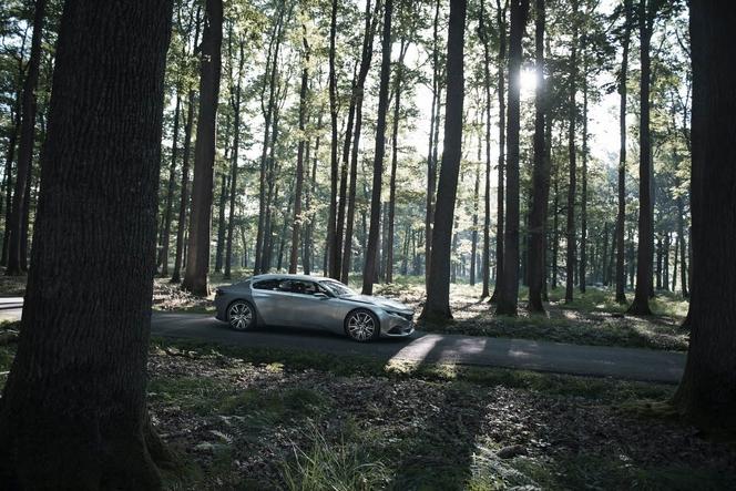 Salon de Paris 2014 - Peugeot Exalt concept: anticipations