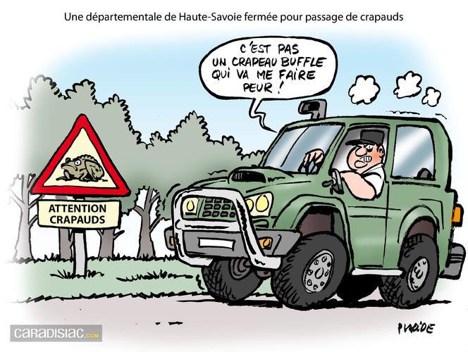 Le dessin du jour -  Danger : invasion de crapaud buffle