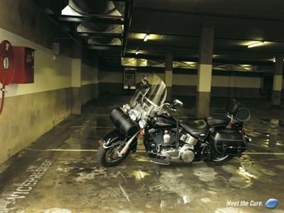 Photo du jour : c'est pas une pub Harley ... mais presque.