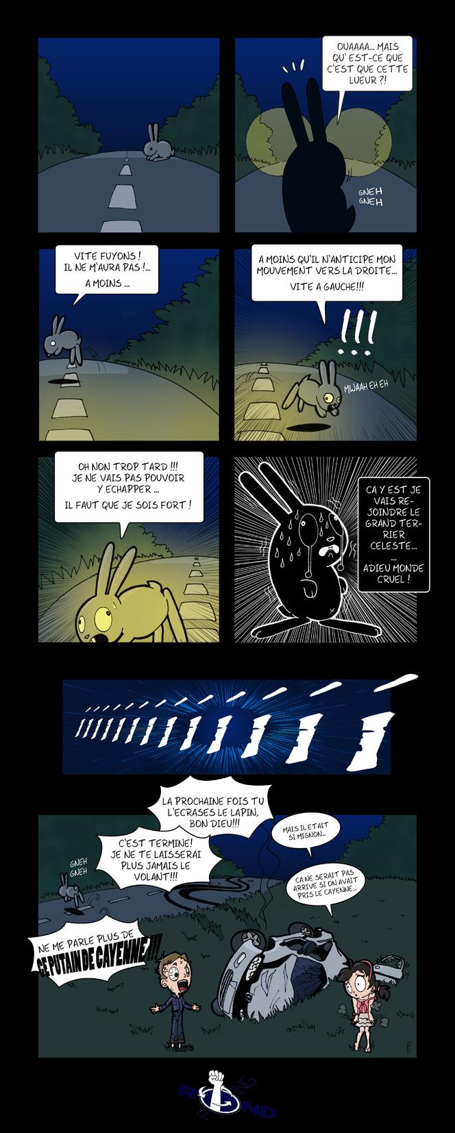 BD Caradisiac - Le retour du lapin crétin !