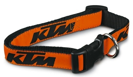 KTM : votre chien se mettra aussi à l'orange en 2011…
