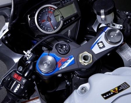 Suzuki habille son Gex 1000.