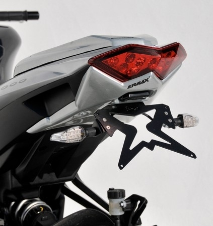 Ermax se fait la Z1000 version 2010...