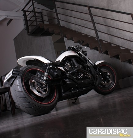 Harley Davidson Night Rod by Yacouba...