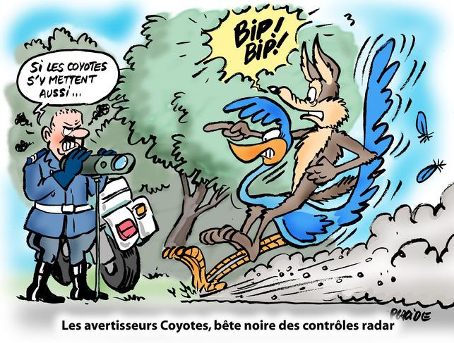 Placide défend nos amis les coyotes