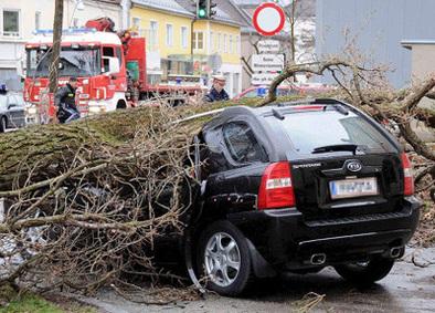 Point info de 15h - Tempête et assurance auto, que faire ?