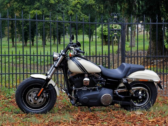 Photo harley davidson fat boy