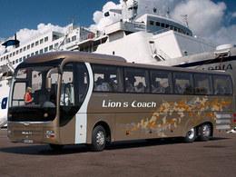 Man Lion S Coach