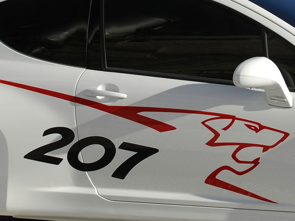 Peugeot207 Concept